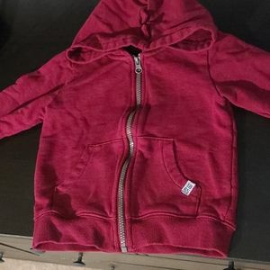 Dinosaur Hood Zip Up Sweatshirt